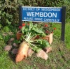Wembdon, home of mangold hurling